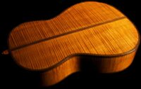 Wood for Acoustic / Classical guitar