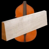 Double bass spruce top