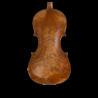 Cello wood rarely figured