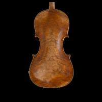 Cello wood rarely figured