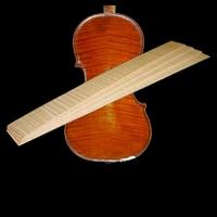 RibsViolin, Viola, Cello, Bass
